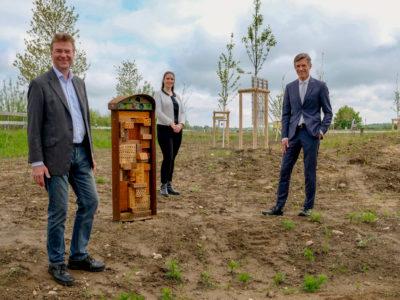 Neues Leben für die Streuobstwiese im TIP Innovationspark Nordheide